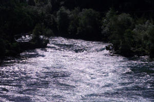 Rapids on the Waikato River near Taupo.