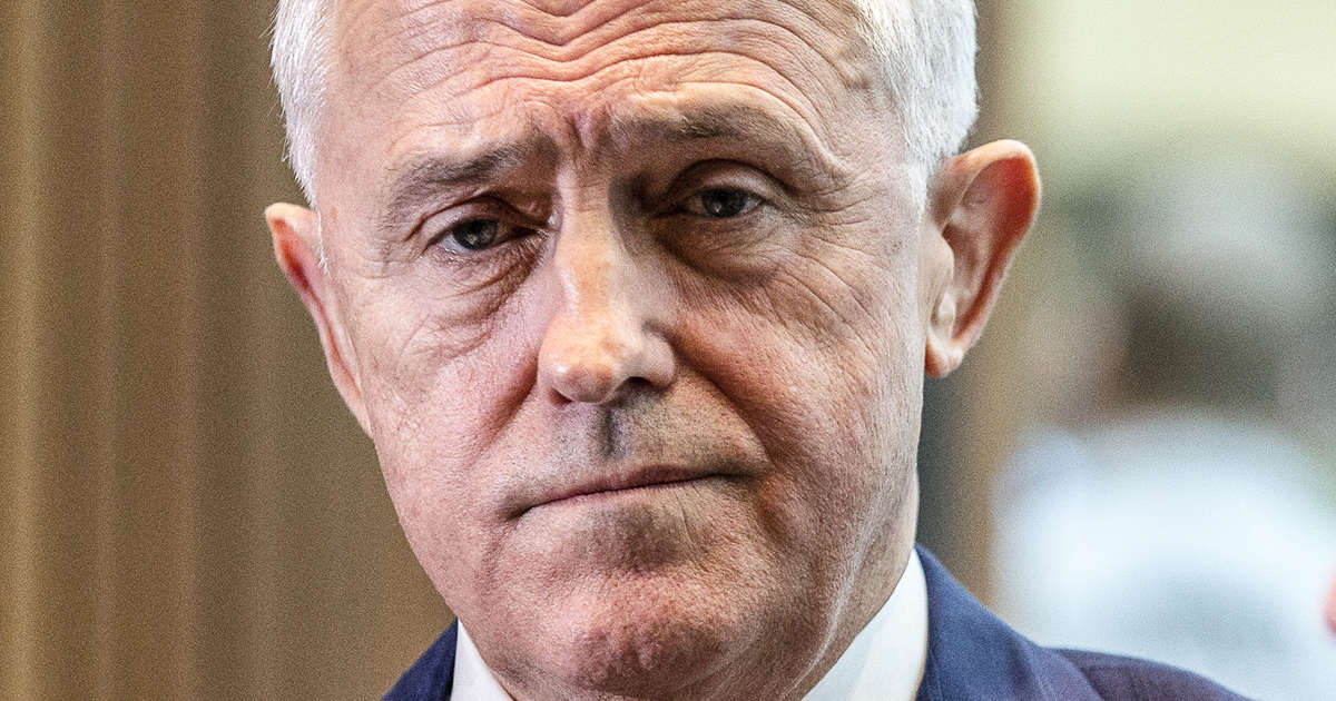 'There is real concern about Sudanese gangs': Turnbull