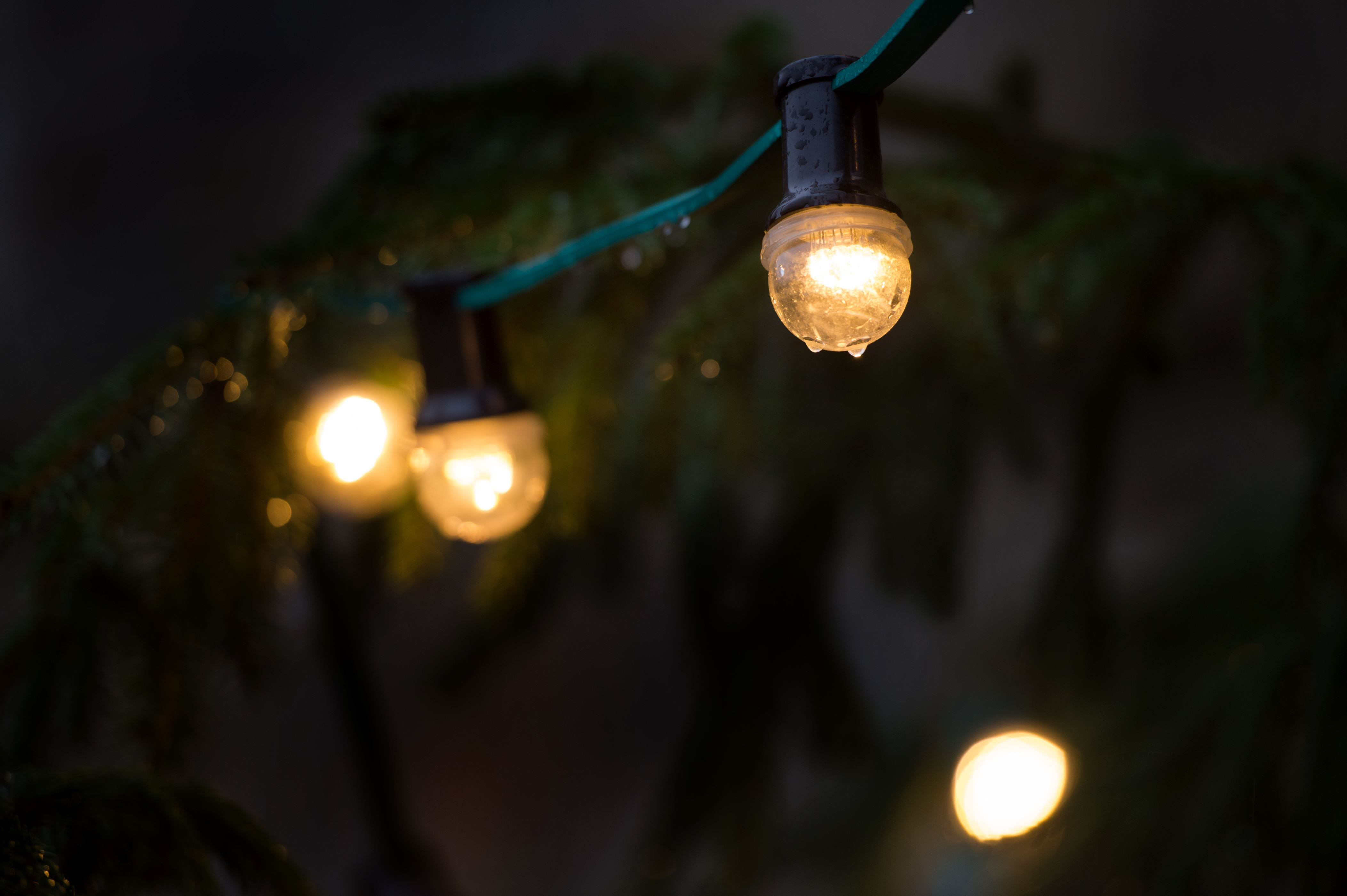 Rain drops hanging from a fairy lights ten days before Christmas Eve in the old town of Dresden, Germany, 14 December 2016. Photo: Arno Burgi/dpa-Zentralbild/dpa | usage worldwide   (Photo by Arno Burgi/picture alliance via Getty Images)