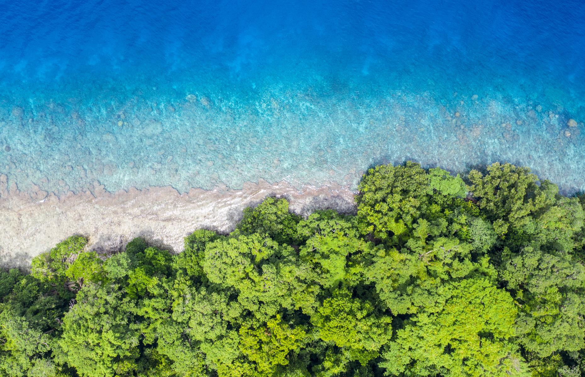 Slide 5 of 26: The island of New Guinea, off Australia, is a tropical paradise and one of the most biologically diverse areas on the planet. Some of the world's key rivers – such as theMamberamo – flow through New Guinea's luscious forests.