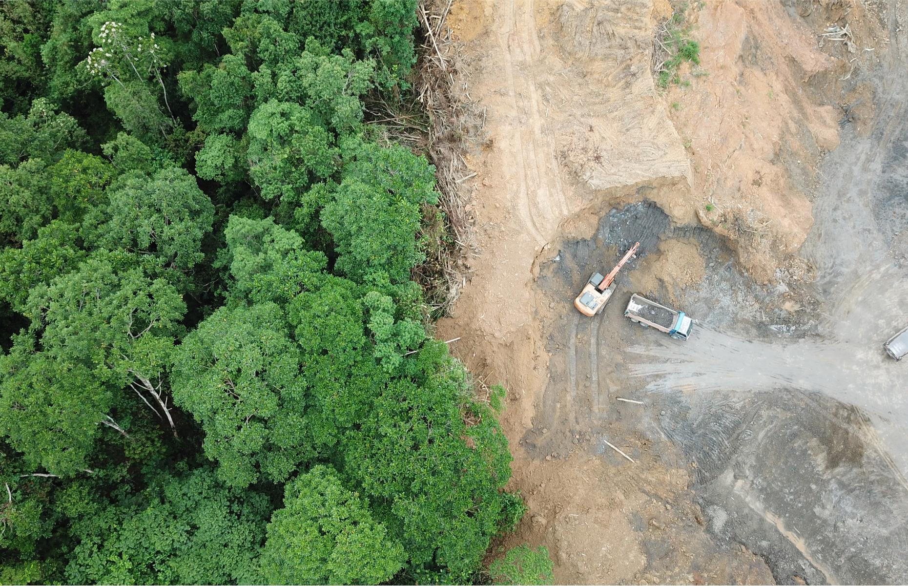 Slide 24 of 26: But, like many tropical rainforests around the world, Borneo is experiencing significant deforestation, particularly for the extraction of resources such as timber, palm oil, pulp, rubber and minerals, with one of the biggest drivers being the global demand for palm oil. While protection laws are in effect throughout Borneo, they are often disregarded.  See these secret wonders hidden in the world's largest deserts