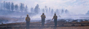 Firefighters and wild fire Montana USA (Caused by global warming). (Photo by: Avalon/UIG via Getty Images)