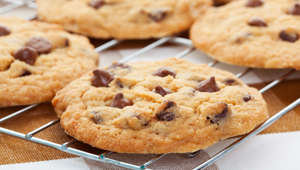 """Warm, golden brown, chocolate chip cookies cooling on a rack.  Shallow depth of field."""