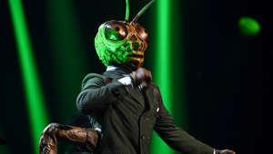 "11 July 2019, North Rhine-Westphalia, Cologne: The grasshopper is on stage at the ProSieben show ""The Masked Singer"". Photo: Henning Kaiser/dpa (Photo by Henning Kaiser/picture alliance via Getty Images)"