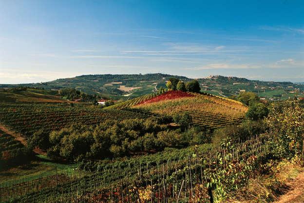 Diapositiva 1 di 59: Vineyard landscape near Serralunga d'Alba, Langhe (UNESCO World Heritage List, 2014), Piedmont, Italy.