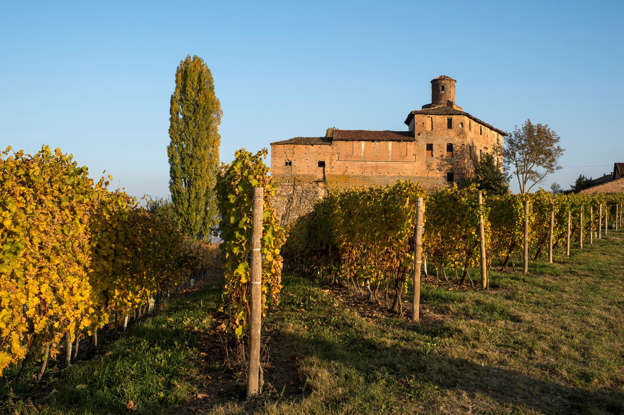 Diapositiva 7 di 59: Italy. Piedmont. Langhe. vineyards around Barolo in autumn. (Photo by: De Simone Lorenzo/AGF/UIG via Getty Images)