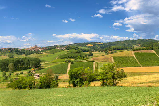 Diapositiva 4 di 59: Country landscape of Monferrato (Asti, Piedmont, Italy) at summer, with vineyards