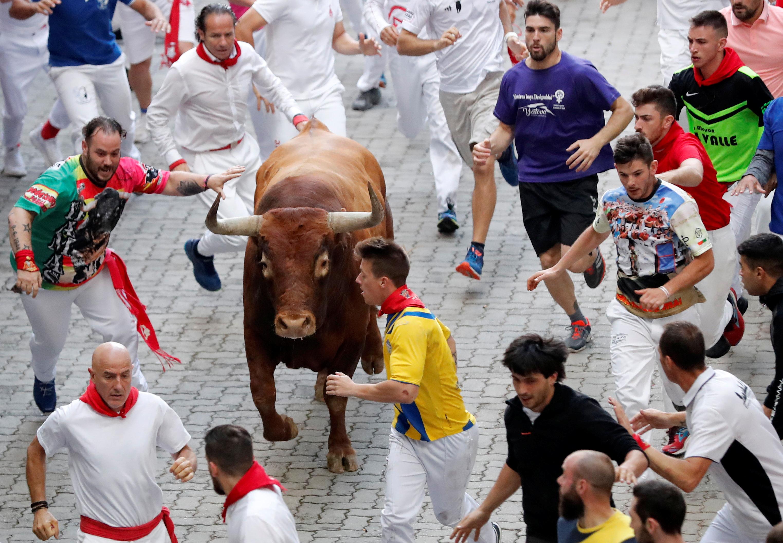 Whores Pamplona