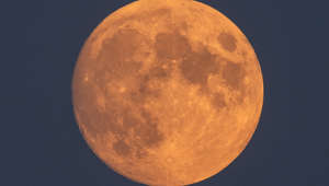 15 July 2019, Saxony, Dresden: The 99-percent full moon can be seen in the evening in the sky. At the partial eclipse on 16.07.2019 the moon will turn rust red in the sky. At the maximum around 23.30 hrs almost two thirds of the satellite are covered by the shadow of the earth. Photo: Robert Michael/dpa-Zentralbild/dpa (Photo by Robert Michael/picture alliance via Getty Images)