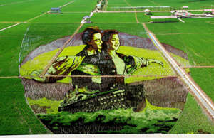 Rice field artworks are made to celebrate China's 70th anniversary