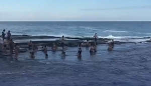 Tourists wiped out by giant wave at Australian beach