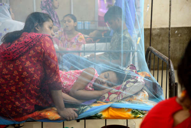 Dengue patients on the rise in Cumilla