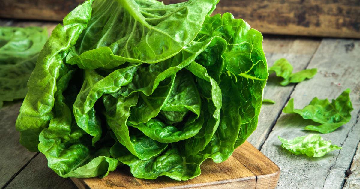 5 Romaine Lettuce Health Benefits That
