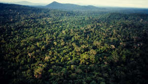 AMAZON RAINFOREST, AMAZONAS STATE, BRAZIL - 2017/06/15: Aerial view of Amazon rain forest, dense forest with high biodiversity, north Brazil. (Photo by Marco Antonio Rezende/Brazil Photos/LightRocket via Getty Images)