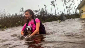 Hurricane Dorian: Woman and dogs wade chest-hide water in Bahamas