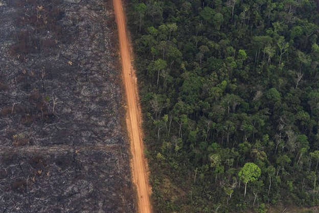 As the Amazon burns, breathing problems spike