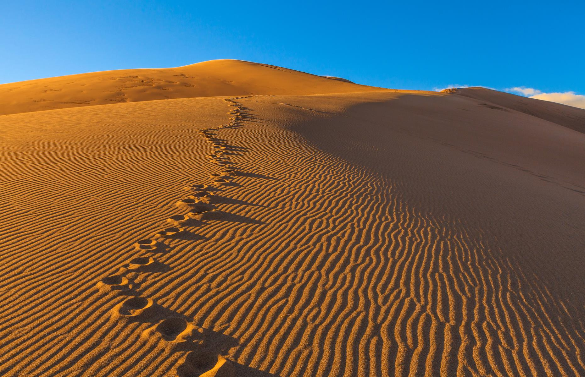 Slide 60 of 61: You'd be forgiven for thinking these vast, golden dunes were in the Sahara Desert but they're actually in Colorado, in the aptly named Great Sand Dunes National Park and Preserve. The loftiest dunes in North America, the sand mountains are framed by blue skies and flanked by snow-capped peaks – they're best explored on a sled or a sand board, or after dark when the inky sky above is flecked with stars.  Secret wonders hidden in the world's largest deserts