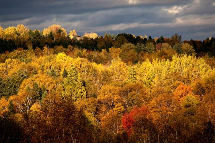 foto de Les plus beaux paysages d'automne du Québec