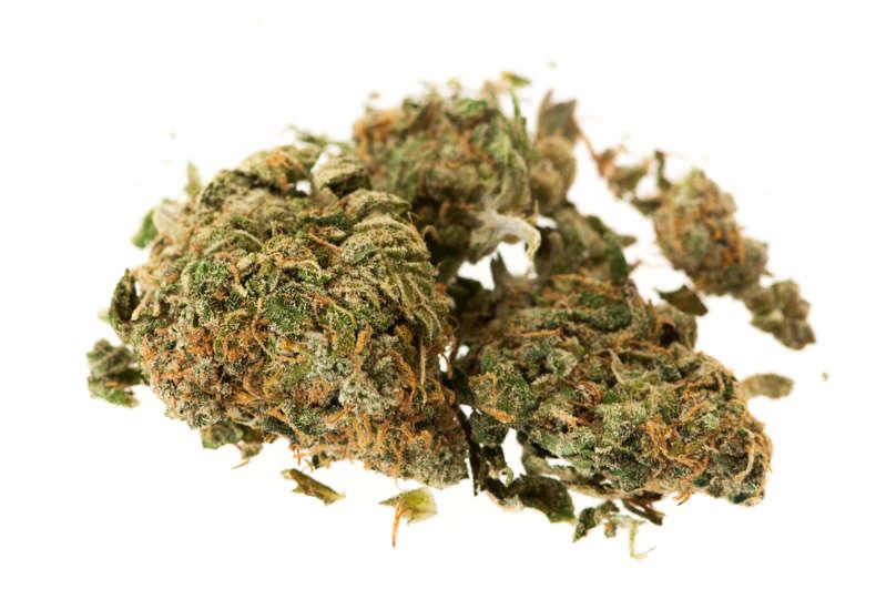Two buds of herbal marijuana