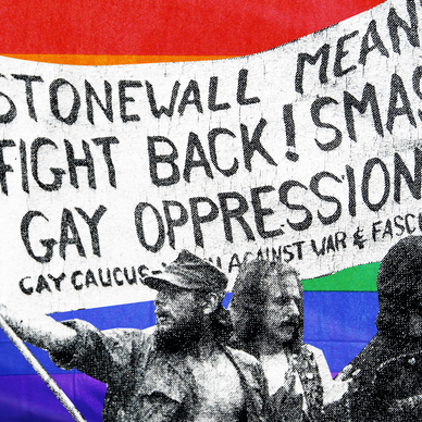 a close up of a sign: LGBTQ's fight for civil rights, explained