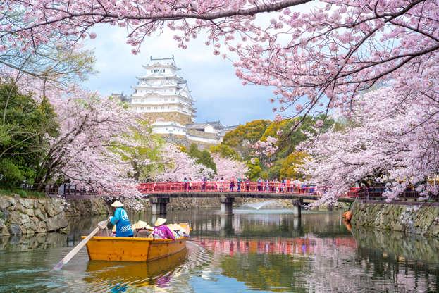 24 枚のスライドの 1 枚目: Himeji, Japan - April 3, 2016: Himeji Castle with beautiful cherry blossom in spring season. It is regarded as the finest surviving example of prototypical Japanese castle architecture