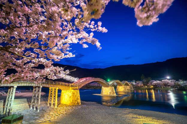 24 枚のスライドの 13 枚目: Cherry blossom Full Bloom at Kintaikyo Bridge , Japan