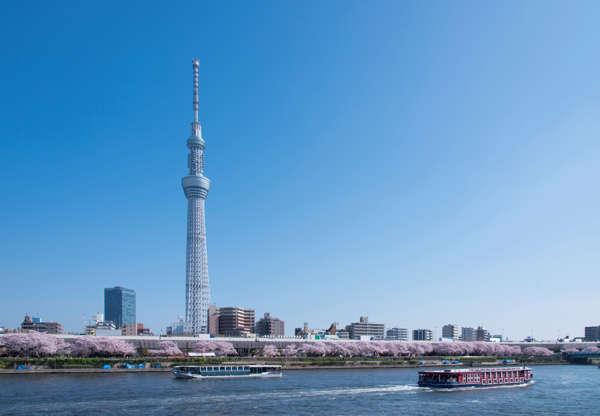 24 枚のスライドの 19 枚目: This is the Sky Tree and cherry trees along the Sumida River in Tokyo.