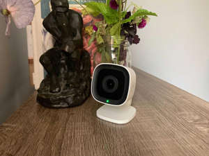 a bouquet of flowers in a vase on a table: Frontpoint's $65 camera is the best deal in its hardware lineup. David Priest/CNET