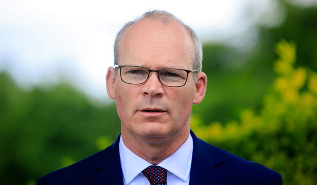 Simon Coveney wearing glasses and a suit and tie: In the letter, Mr Coveney wrote: 'Some of my foreign minister colleagues across Europe were contacted using my phone's identity as a front during that hacking incident. Pic: Gareth Chaney/Collins