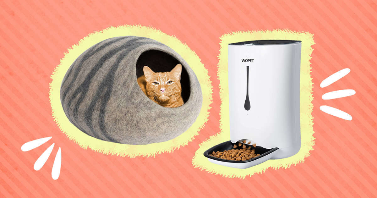 Gifts for Your Cat