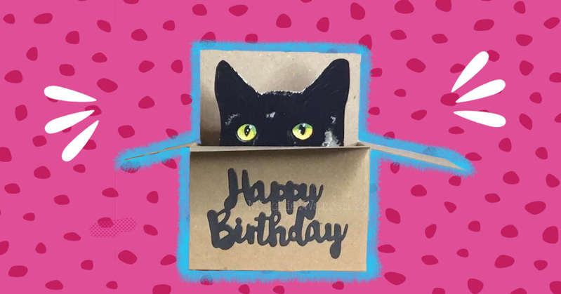 Birthday Cards For Your Cat