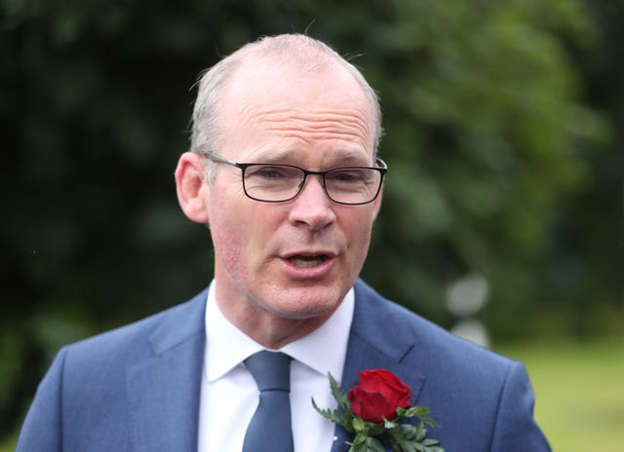 Simon Coveney wearing a suit and tie: Foreign Affairs Minister Simon Coveney has admitted mistakes were made in the appointment of Katherine Zappone (Niall Carson/PA)