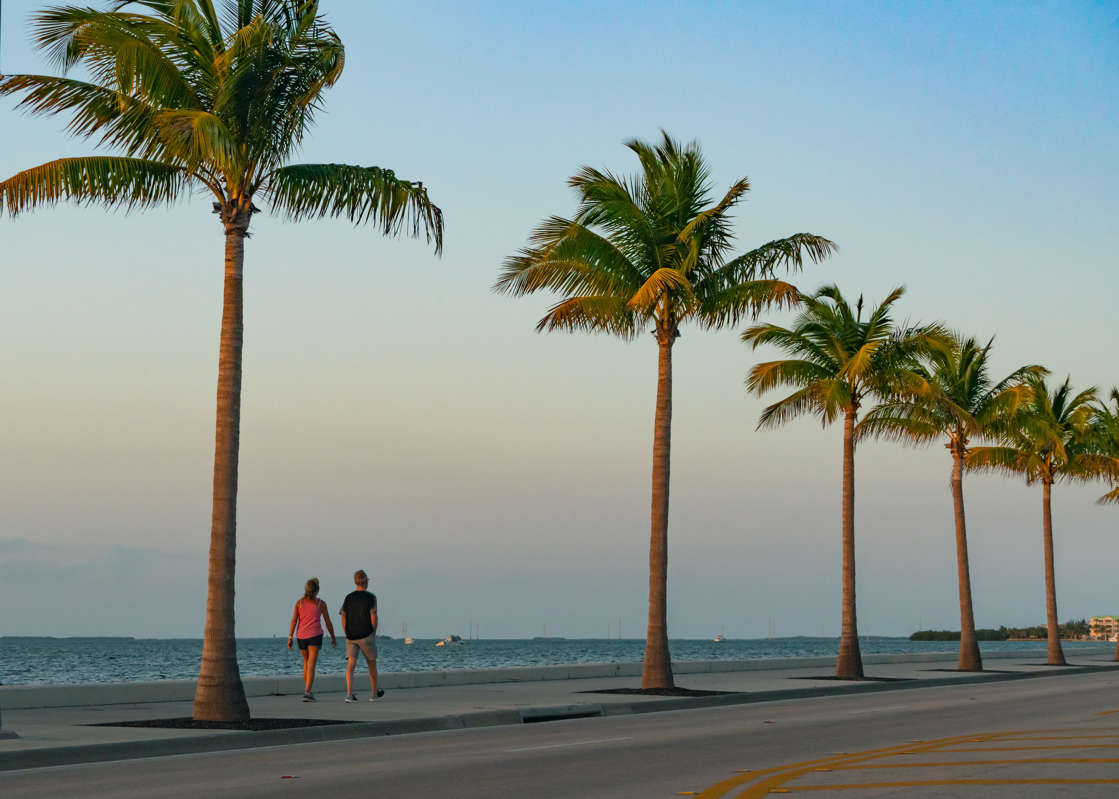 a group of people on a beach with a palm tree: Approximately 65 pounds of cocaine was recovered after it washed ashore in the Florida Keys. In this photo, Key West is seen during Easter Weekend 2021.