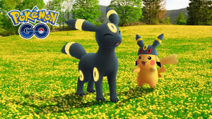 a bear that is standing in the grass: Pokémon Go Eevee evolutions