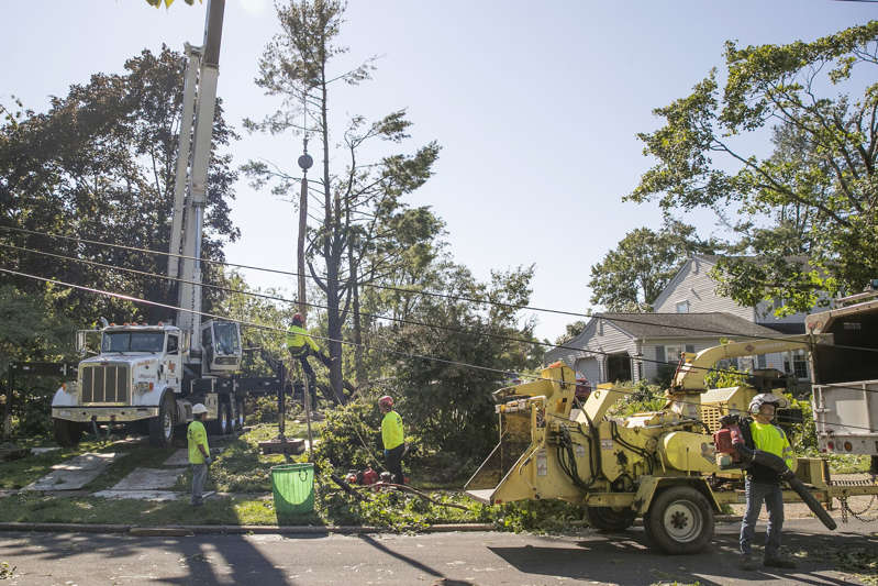 a truck is parked on the side of a dirt road: Crews work to remove trees from the home where Maxine Weinstein was killed off Kenyon Drive.