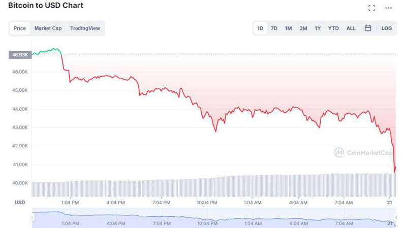 graphical user interface, chart: Not a pretty chart for Bitcoin holders. coinmarketcap.com