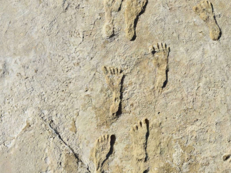a stone building that has a bird on a rock: Fossilized footprints found in New Mexico - NPS, USGS and Bournemouth University
