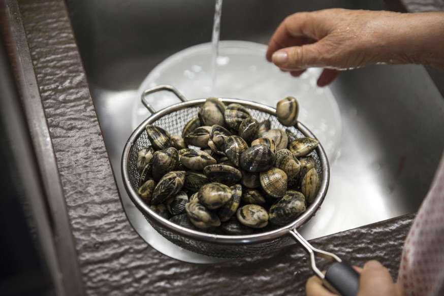 Clams and praires