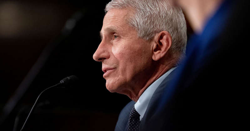 Anthony S. Fauci looking at the camera: Anthony Fauci, director of the National Institute of Allergy and Infectious Diseases, speaks during a Senate Health, Education, Labor, and Pensions Committee hearing at the Dirksen Senate Office Building in Washington, D.C., July 20, 2021.