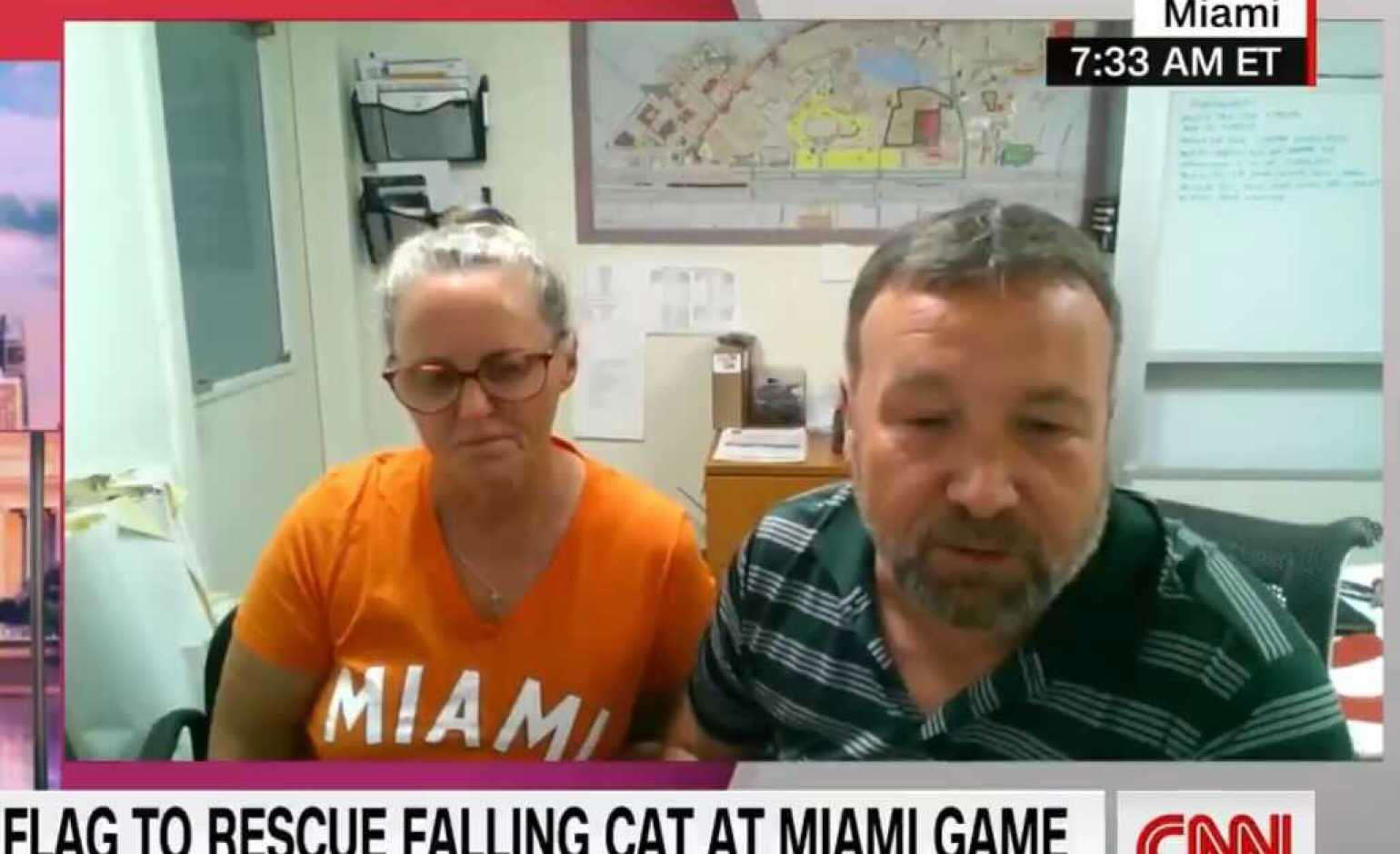 Couple Explains How They Caught a Falling Cat at a Football Game