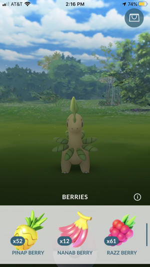 Feeding wild Pokemon berries makes them easier to catch. Screenshot by CNET
