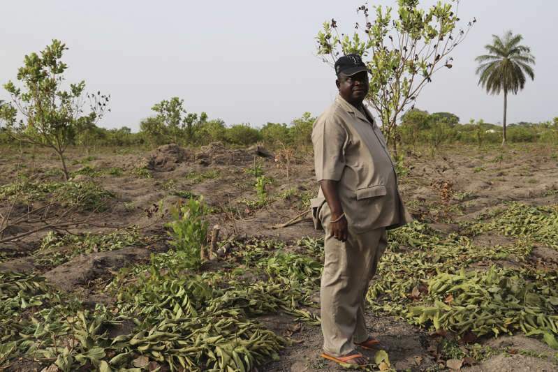 Former general Antonio Indjai stands on his cashew farm outside Mansoa, Guinea-Bissau, in 2015.