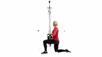Imágenes con ángulo: Half-kneeling Rotational Reverse Chop video