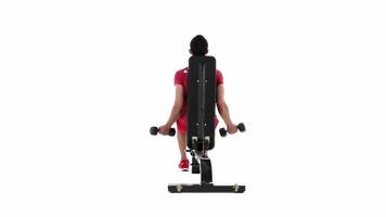 Bilder aus Winkeln: Seated Dumbbell Biceps Curl Video