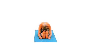 Bilder aus Winkeln: Seated Long-leg Forward Bend Pose Video
