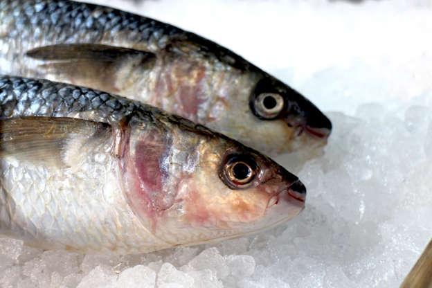 Διαφάνεια 13 από 15: Fish Odour Syndrome