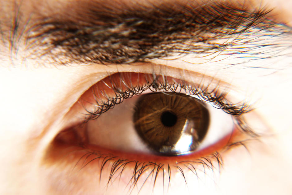 These Foods Will Help Preserve Your Vision