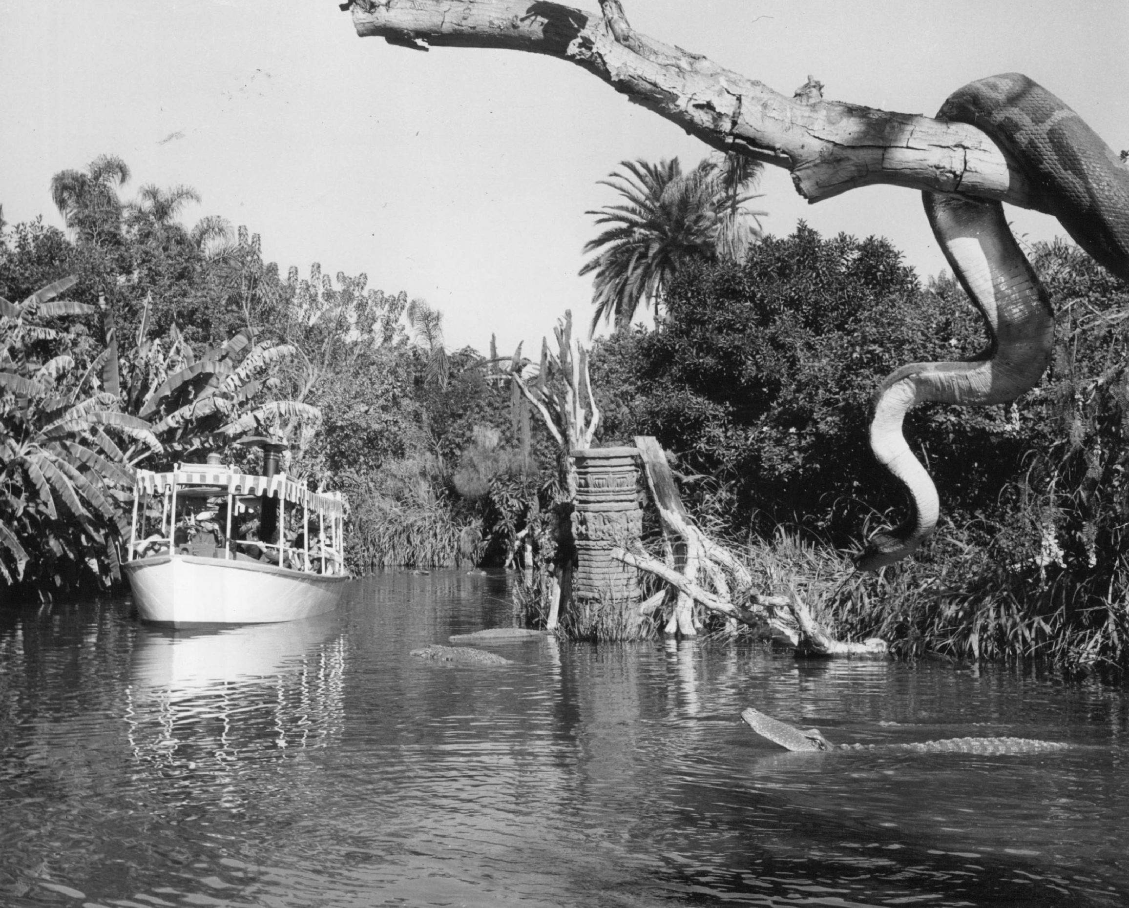 Slide 21 of 33: APR 24 1966; Denver post Carriers will travel down this river in June; The Jungle stream in Disneyland has warriors, snakes, alligators and elephants.  (Photo By The Denver Post via Getty Images)