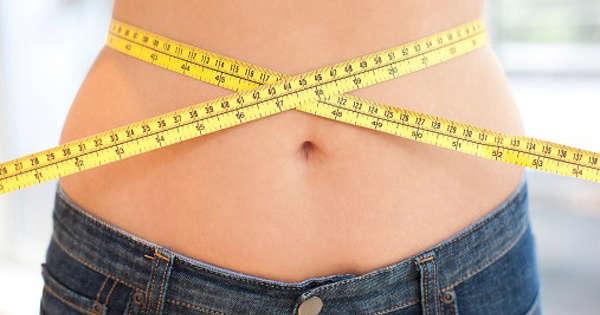Pronokal Diät Erfahrungen