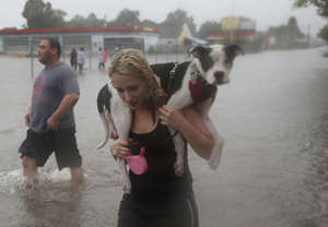 HOUSTON, TX - AUGUST 27:  Naomi Coto carries Simba on her shoulders as they evacuate their home after the area was inundated with flooding from Hurricane Harvey on August 27, 2017 in Houston, Texas. Harvey, which made landfall north of Corpus Christi late Friday evening, is expected to dump upwards to 40 inches of rain in Texas over the next couple of days.  (Photo by Joe Raedle/Getty Images)